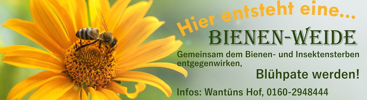 Bienenweide - Blühpate werden!