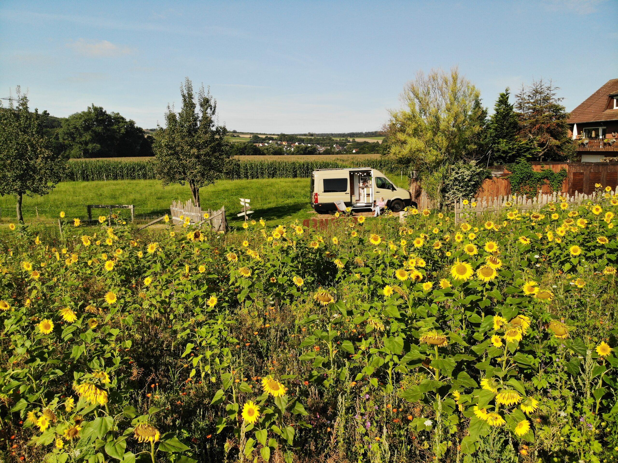 Landvergnügen an der Bienenweide